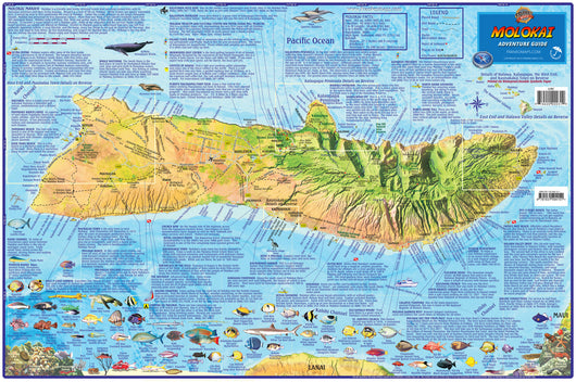 Molokai Adventure Guide Map Laminated Poster