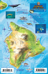 "Hawaii ""Big Island"" Fish Card"