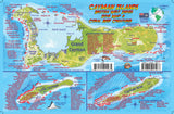 Cayman Islands Dive Guide & Fish ID Card