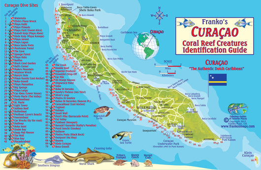 Curacao dive guide and fish id card