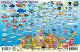 Curacao fish identification card
