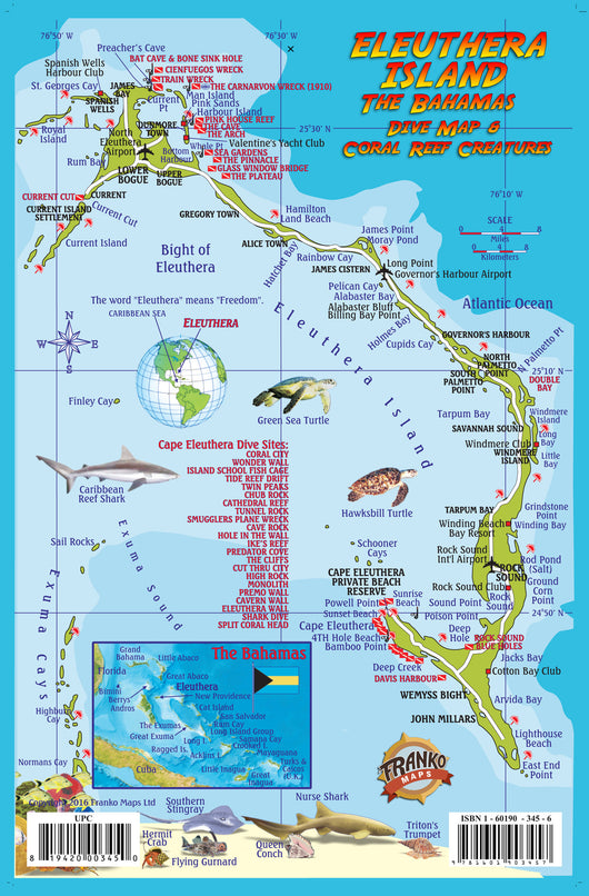 Eleuthera Island, The Bahamas, Fish Card