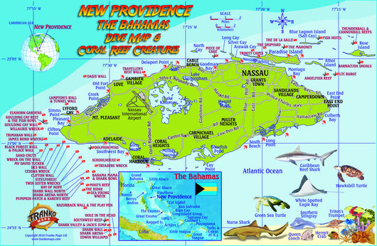New Providence Island, The Bahamas, Fish Card