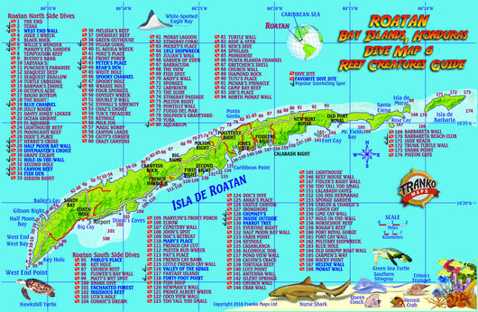 Roatan Fish Card