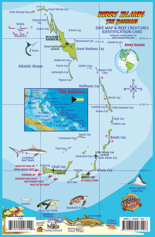 Berry Islands Dive Guide & Fish ID