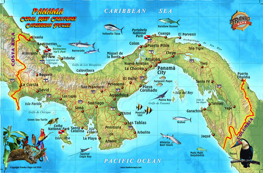 Panama caribbean Fish Card