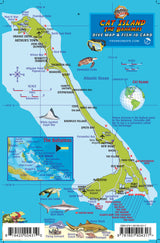 Cat Island Dive Guide & Fish ID