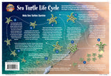 Sea Turtles Lifecycle Card