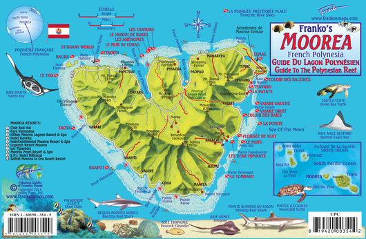 Moorea Fish Card
