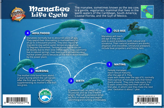 Manatee Life Cycle Card