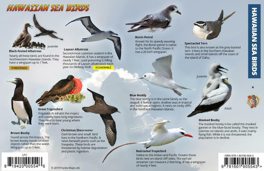 Hawaiian Sea & Shore Birds Guide Card