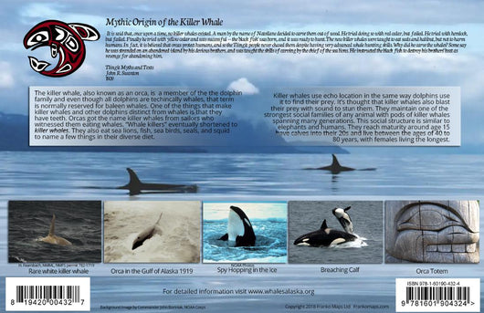 Killer Whales of Alaska / Orca Card