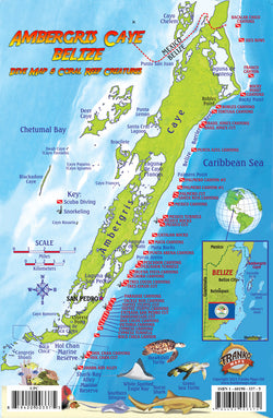 Franko Map of Ambergris Caye, Belize