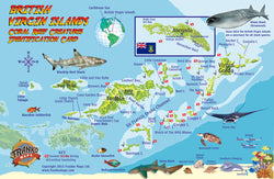British Virgin Islands fish id card and mini-map