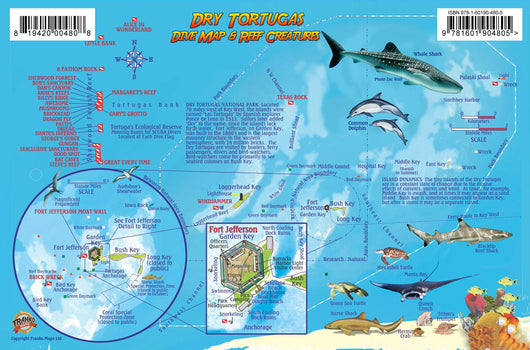 Dry Tortugas Fish Card