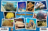 Florida Coral Identification Guide Card