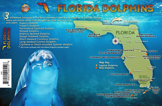 Florida Dolphins Guide Card