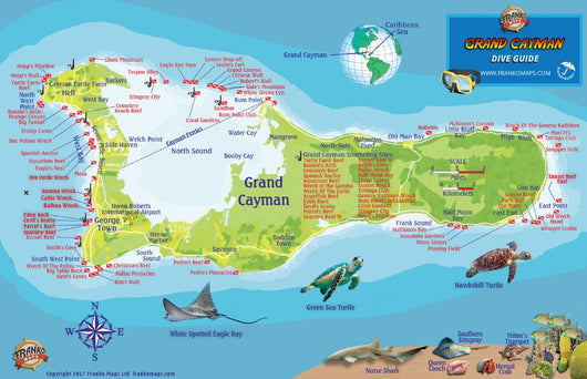 Grand Cayman Island Fish Card