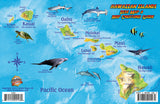 Hawaiian Islands Coral Reef Creatures