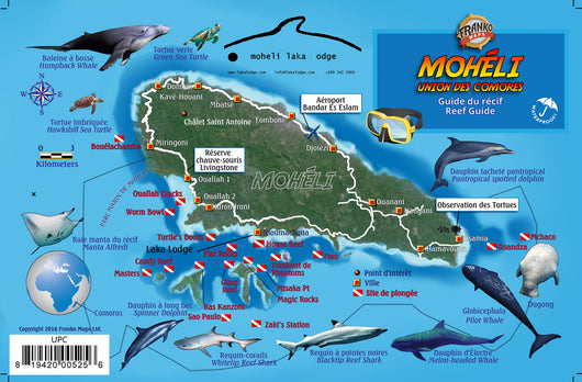 Comoros Dive and Fish ID