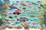 Southern California Fish identification by Franko Maps.