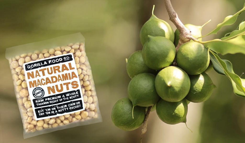 Gorilla-Food-Co-Macadamia-Nuts