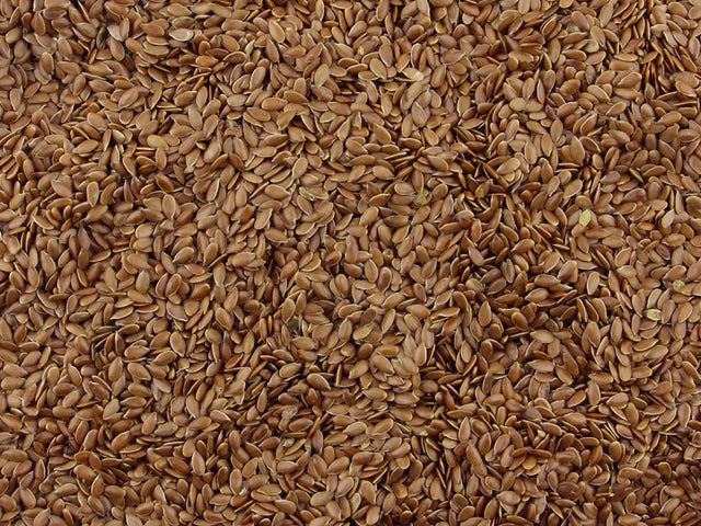 Gorilla Food Co. Linseeds Flax Seed Brown Whole 25kg Bulk Wholesale