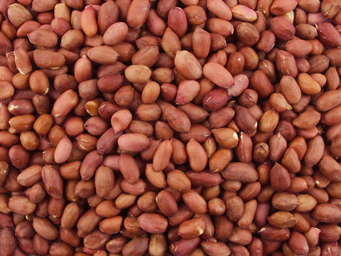 Gorilla Food Co. Redskin Peanuts Whole Raw 25kg Bulk Wholesale