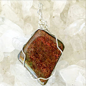 Ammolite Fossilized Pendant Wire Wrapped - New Earth Gifts