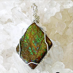 Ammolite Green Fossilized Pendant - New Earth Gifts