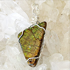 Ammolite Fossilized Pendants - New Earth Gifts