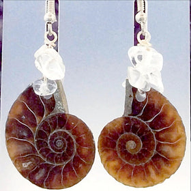 Ammonite Earrings - New Earth Gifts