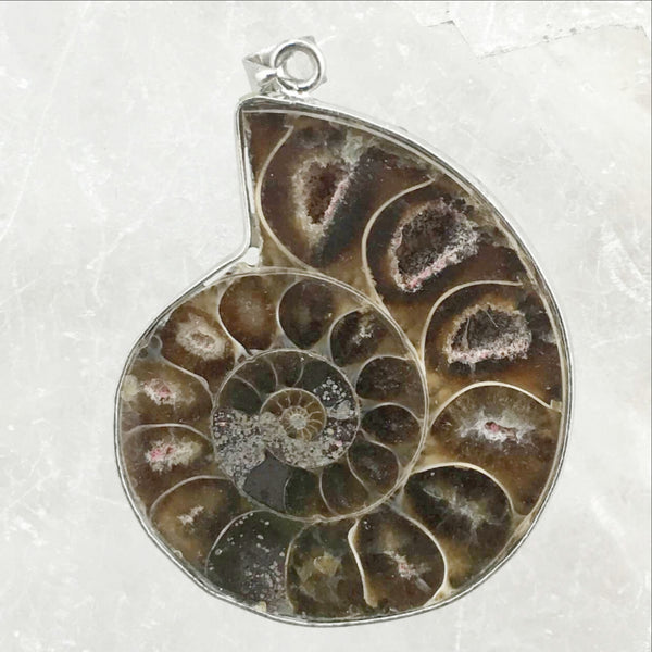 Ammonite Pendant | New Earth Gifts