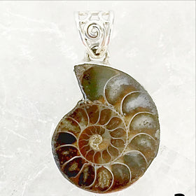 Ammonite Sterling Silver Pendant with Filigree Bail - New Earth Gifts