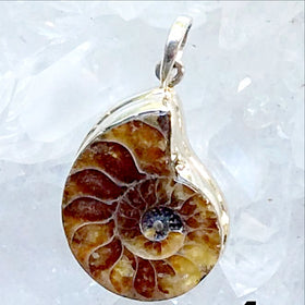Ammonite Sterling Silver Pendants - New Earth Gifts