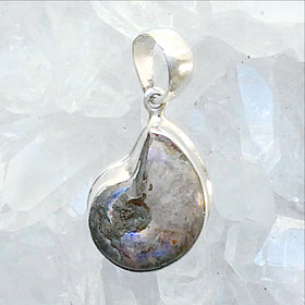 Ammonite Sterling Silver Pendant with Lovely Titanium Coating - New Earth Gifts
