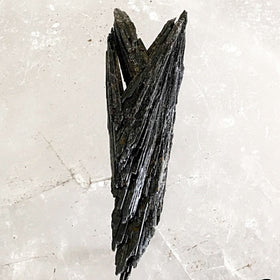 Black Kyanite Raw Blade Specimens | New Earth Gifts