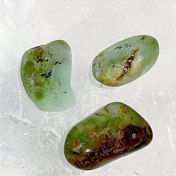 Chrysoprase  Tumbled Stone 1 pc -New Earth Gifts