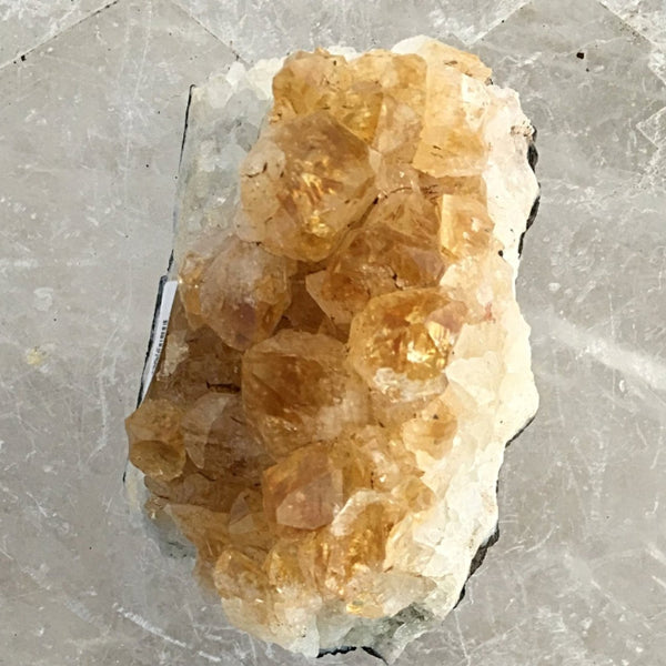 Citrine Druzy Cluster With Warm-Colored Crystals For Sale New Earth Gifts