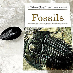 Fossils Book the Golden Guide Series - New Earth Gifts