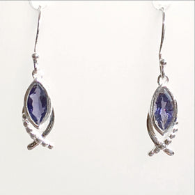 Iolite Fish Symbol Earrings - New Earth Gifts