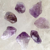 Amethyst Natural Points 7 Pc Set | New Earth Gifts