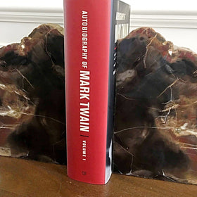 Petrified Wood Bookends | New Earth Gifts