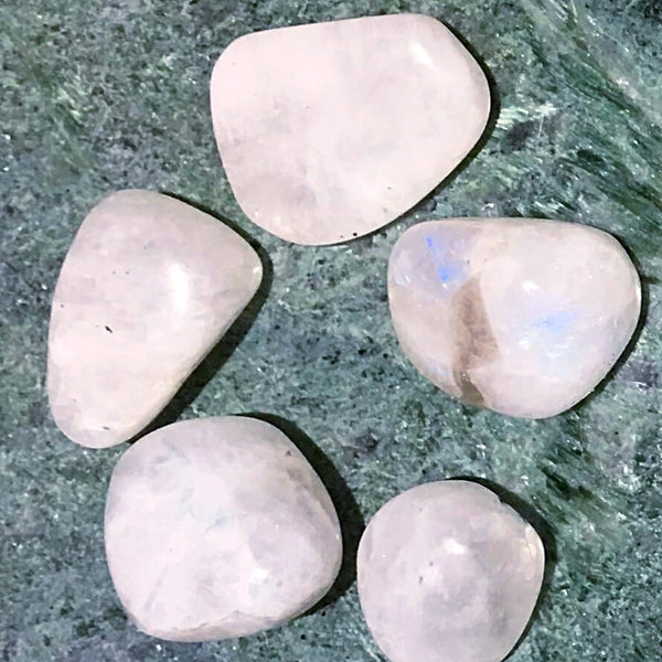 Natural Rainbow Moonstone Tumbled Specimen-New Earth Gifts