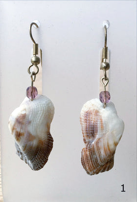 Florida Seashell Earrings Mossy Ark Shells 14kt Gold Findings - New Earth Gifts