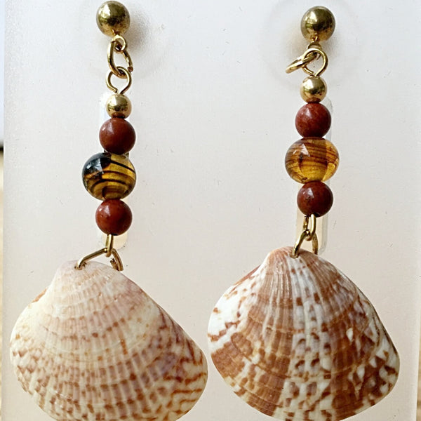 Florida Seashell Earrings Cockle Shell - New Earth Gifts