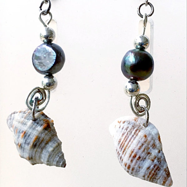 Florida Seashell Earrings Cone Shell Sterling Silver Findings - New Earth Gifts
