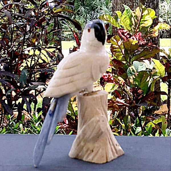 Gemstone Parrot in White Calcite - New Earth Gifts