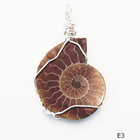 Ammonite Pendant - Wire Wrapped Ammonites - New Earth Gifts and Beads