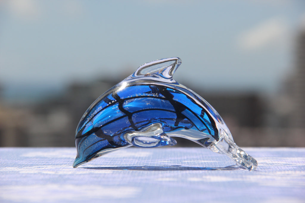 Dolphin in Blue and Black